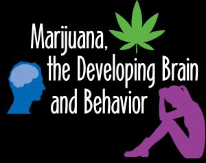 Marijuana, the Developing Brain & Behavior @ Perkiomen Valley High School | Collegeville | Pennsylvania | United States