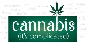 Cannabis (it's complicated) @ Perkiomen Valley High School